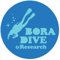 Bora Dive and Research Retina Logo